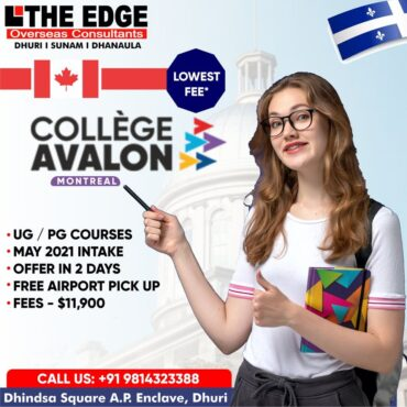 study in avalon college